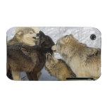 Paquete de lobos que obran recíprocamente funda para iPhone 3 de Case-Mate