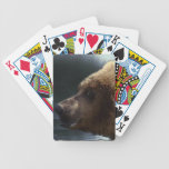 Paquete del diseñador de la fauna del oso grizzly barajas