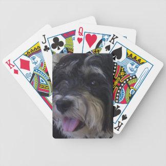 paquete del maltipoo de tarjetas baraja de cartas