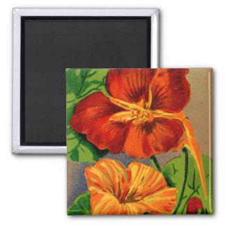 Paquete francés de la semilla de flor de la imán cuadrado