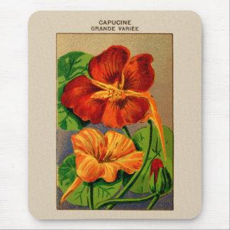 Paquete francés de la semilla de flor de la tapetes de raton