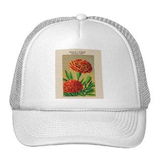 Paquete francés de la semilla de flor del clavel d