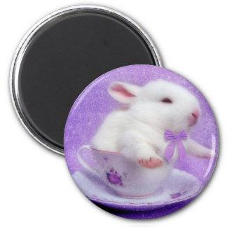Paquete púrpura de alegría imanes de nevera