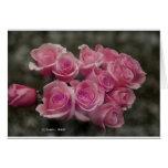 Paquete rosado de los rosas felicitacion