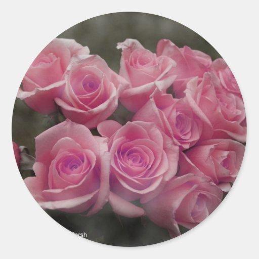 Paquete rosado de los rosas pegatina redonda