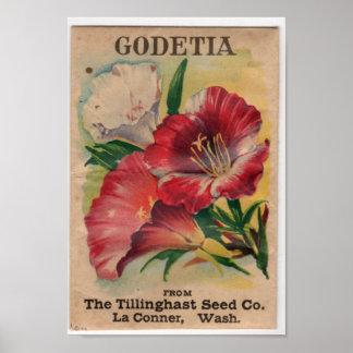 Paquetes de la semilla del vintage póster