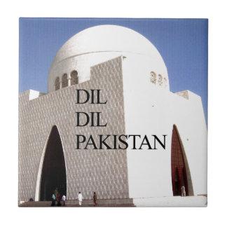 Paquistán Dil Dil Hakuna Matata Teja