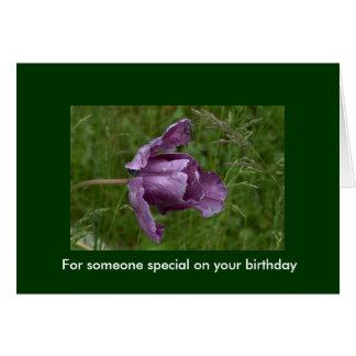 Para alguien especial en su cumpleaños tarjeta de felicitación