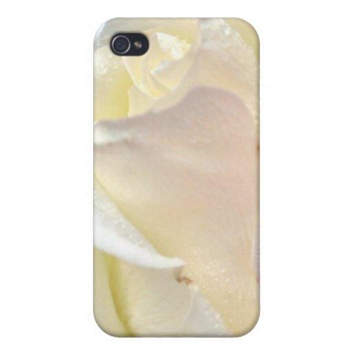 Para amar un color de rosa iPhone 4 protector