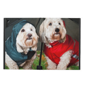 Para arriba vestidos perros debajo del paraguas