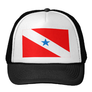 Pará, Brazil Flag Trucker Hat