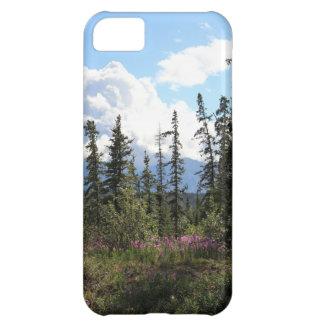 Para el paisaje de Alaska de la montaña de los cie