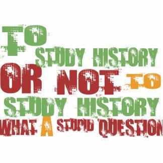 Para estudiar historia escultura fotográfica