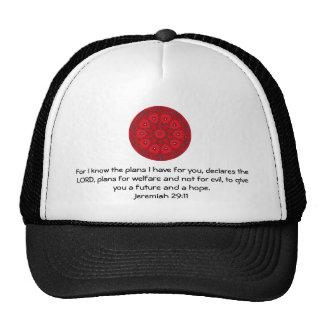 Para mí sé los planes que tengo….  29:11 de gorra