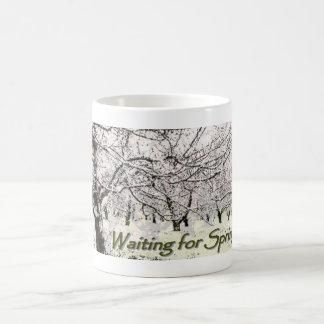 Para primavera que espera por la taza de R J Ke