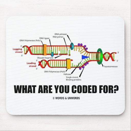¿Para qué le cifran? (Réplica de la DNA) Mousepads