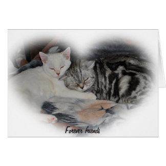 Para siempre amigos - tarjeta de nota del gato