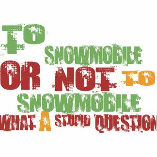 Para Snowmobile Escultura Fotografica