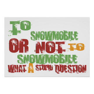 Para Snowmobile Posters