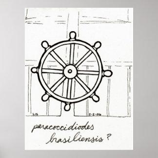 Paracoccidioides print