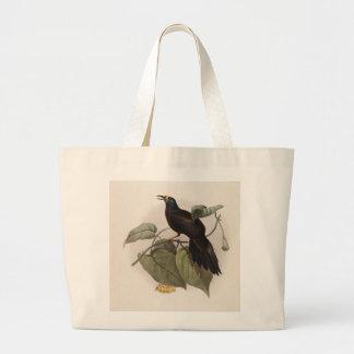 Paradigalla carunculata - Wattled Bird Of Paradise Jumbo Tote Bag