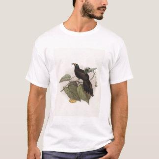 Paradigalla carunculata - Wattled Bird Of Paradise T-Shirt