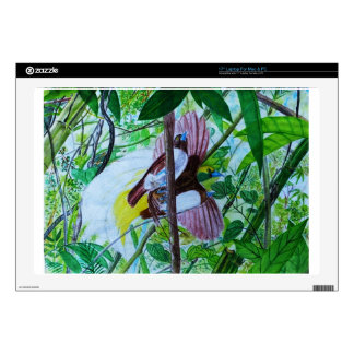 Paradise Birds in Watercolor Decals For Laptops