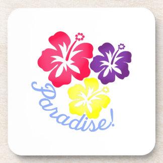 Paradise Coasters