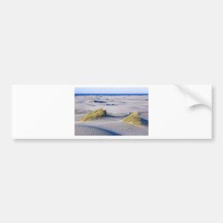 Paradise coastline with wind textured sand dunes bumper sticker
