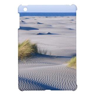Paradise coastline with wind textured sand dunes iPad mini covers