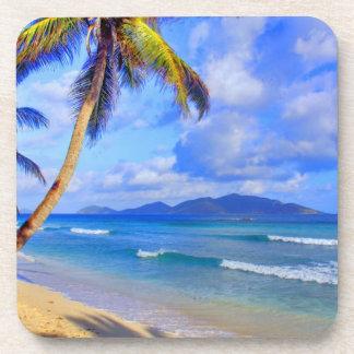 Paradise Found Coaster