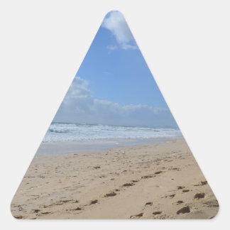 Paradise Found Triangle Sticker