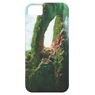 Paradise iPhone 5 Case