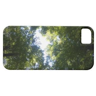 Paradise, New Zealand iPhone SE/5/5s Case