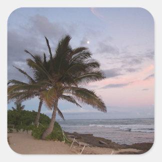 Paradise Palms Sunset Hawaii Sticker