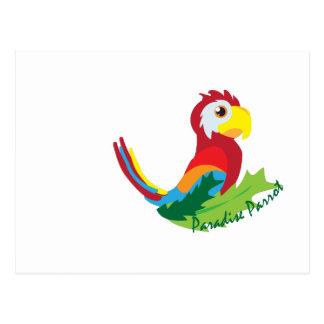 Paradise Parrot Post Cards
