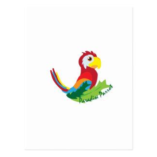 Paradise Parrot Postcard
