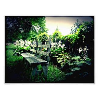 Paradise Photo Print