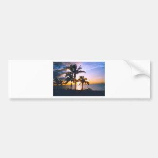 Paradise-Vicki-Lynn Bumper Sticker