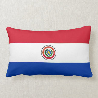 PARAGUAY COJINES