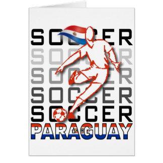 Paraguay Copa America 2011 Card