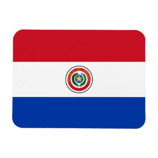 Paraguay Flag Vinyl Magnet