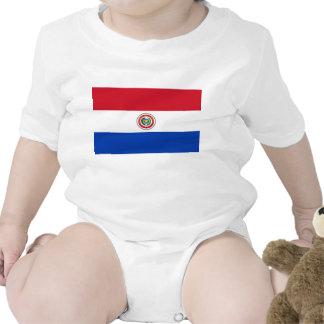 Paraguay Flag Creeper