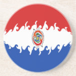 Paraguay Gnarly Flag Drink Coaster