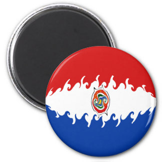 Paraguay Gnarly Flag Magnet