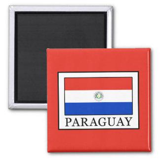 Paraguay Magnet