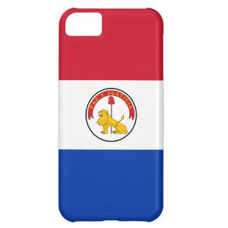 Paraguay Paraguayan Flag Reverse iPhone 5C Covers