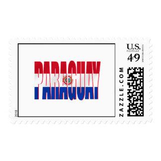 Paraguay redactó banderas del Paraguayan del Envio
