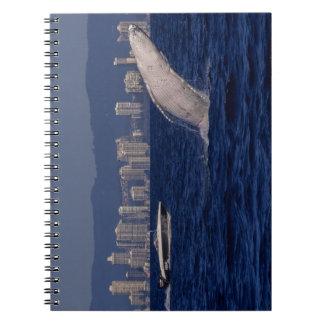 Paraíso Australia de las personas que practica Notebook
