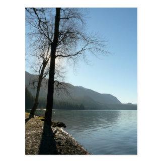 Paraíso de la orilla del lago tarjeta postal